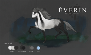Everin Reference Sheet by Everyll