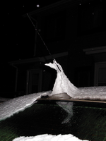 Antennal Ice Sculpture 2 by WintersDawn