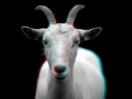 Goat 3-D conversion by MVRamsey