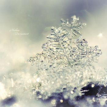 Mysterious Snowflake by nnIKOO