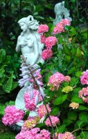 Venus And Her Flowers by Forestina-Fotos