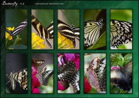 [PACK] Butterfly-1.2 by kismuntr