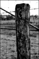 Fence Post by OnTheRoad