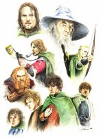 The Fellowship of the Ring by ringbearer80