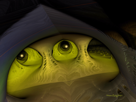 Frog Of The Night by alteredteddybear