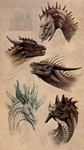 R:5 dragons 2016 by Archspirigvit