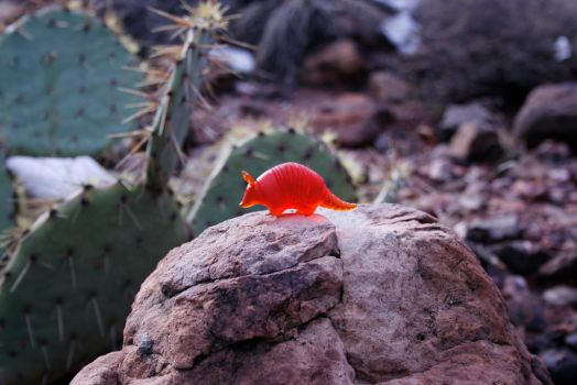 Red-Orange Tinted Armadillo Figurine with Cactus by MiniMynagerie