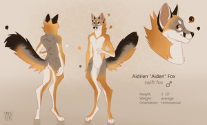 [com] aiden by smokeplanet