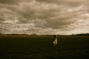Don't Fly Away III by BreeAnnaCSmith