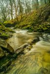 quiet stream by jakeyphoto