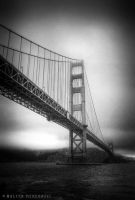 Golden Gate by colpewole