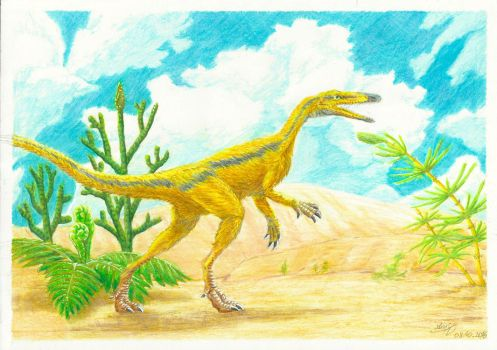 Coelophysis by Silvanoxia