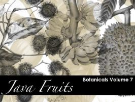 Botanicals- Java Fruits by remittancegirl