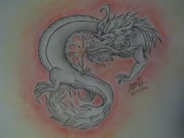 Chinese Dragon by Stephs77