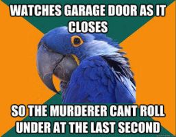 Paranoid Parrot. by LPawesome