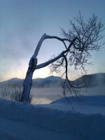 winter by iona76