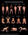 Submissive Pose Chart: Rhianna by LexLucas