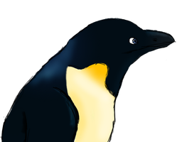 Penguin Sketch by Moonfang66