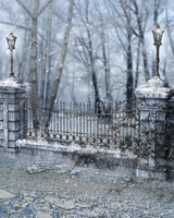 RESTRICTED - Winter Days Premade  Background by frozenstocks