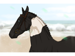 Seaside - Event Entry by tichwin