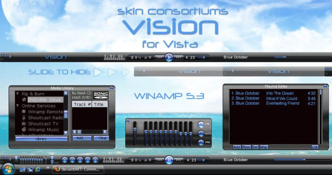 Vision -update by Skin-Consortium
