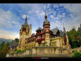 Peles Castle by razvanx