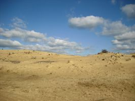Bright dunes background 4 by photohouse