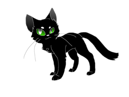 Hollyleaf by taigress