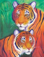 Two tigers watercolor by Crazdude