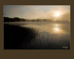 Morning Sunrise foggy lake by DGAnder