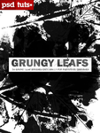 Grungy Leaves by Qbrushes