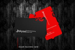 Skysel Business Card by J-a-c-k--8-9