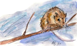 Mouse on a stick. by Orlifan