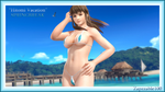 Hitomi Vacation by Zapzzable100