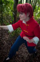 Ranma 1/2 - The Search by seethroughcrew