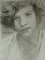 Harry Styles Portrait by Bluecknight