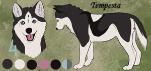 Tempesta - New Character by Rabentag