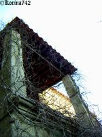 Just forgotten by Korina742