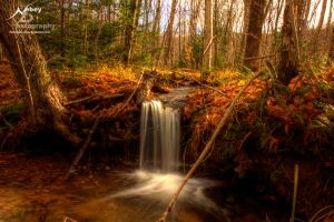 HDR Autumn Falls 2009 2 by Nebey