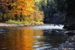The_Gold_of_the_River VIII by hyneige