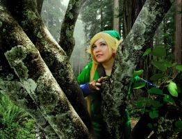 The legend of zelda cosplay by Blancaliliam