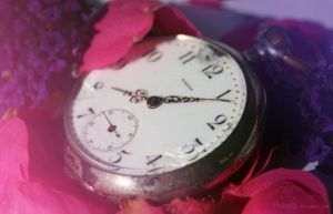 old clock on a bed of flowers by Nexu4