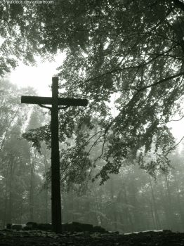 Lonely Cross In The Woods by Waldeck