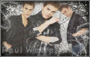 Paul Wesley by Patch4Ever