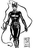 DSC Catwoman by Sassophiliaco