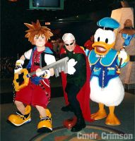Sora and Donald MNSSHP 2004 by Vqstudios