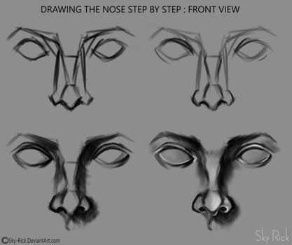 Nose step by step front view by Sky-Rick