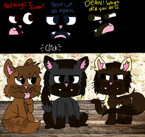 Catz! by MissMizerableRollins