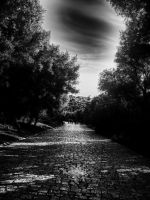 The way of Shadow by IllyriaStudio