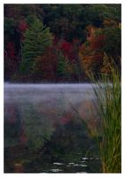 Hall Lake in Fall by morpheusredux